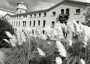 mostra sarajevo 1994